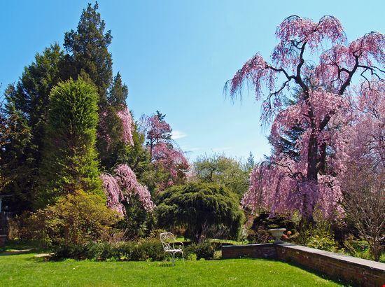 Beverly Gardens