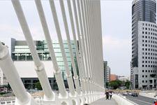 valencia puente de la exposicion
