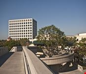 Irvine University