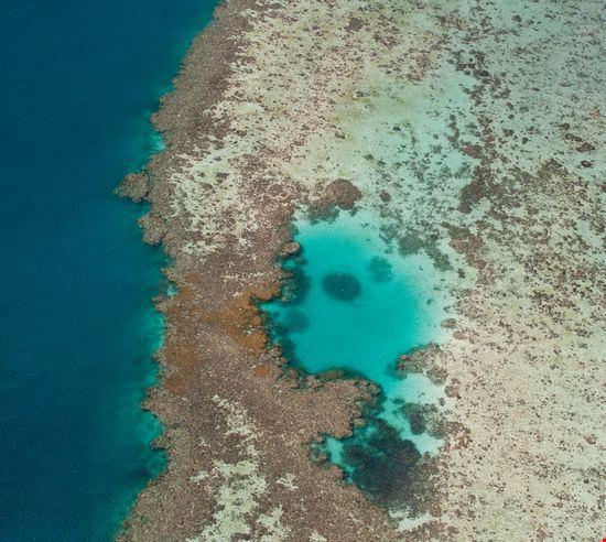 Cairns Marine Park