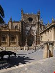 sevilla catedral de sevilla