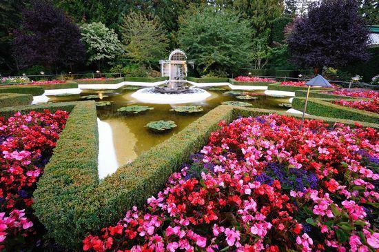 The Butchart Garden
