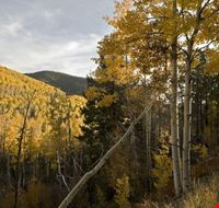 Santa Fe National Forest