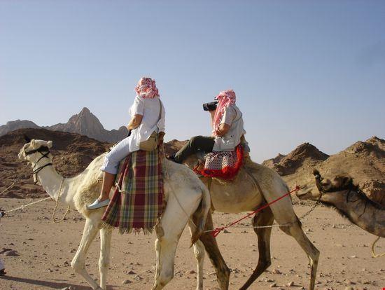 sharm el sheikh camel ride