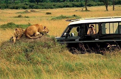 nairobi masai mara and nairobi safari