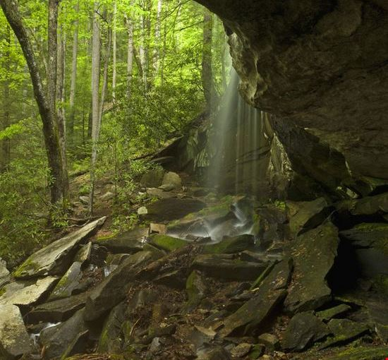 Photo The Pisgah National Forest In Blowing Rock North Carolina