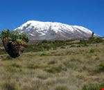 Mount Kilimanjaro climbing expeditions
