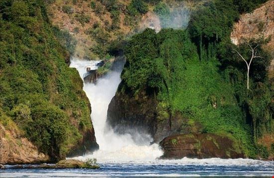 23545 kampala mountain gorilla safari