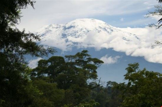 arusha kilimanjaro climbing tours