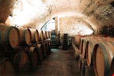 Casa Sola - the aging cellar