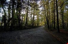 Passerella nel Parco del Castello