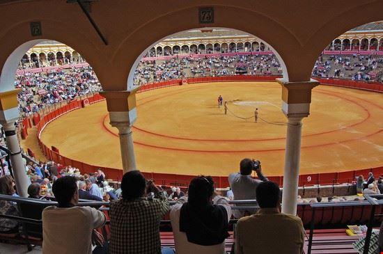 24661 sevilla la tribuna de la plaza de toros de la maestranza