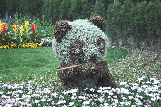 Botanischer garten chenshan parks und g rten von shanghai - Botanischer garten shanghai ...