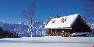 linz winter in oberoesterreich