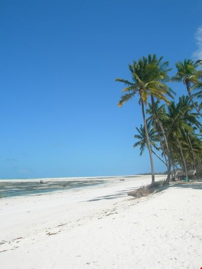 zanzibar la spiaggia