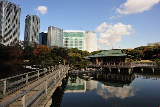 25129 tokyo hamarikyu gardens