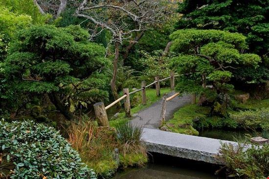 25249 san francisco japanese tea garden