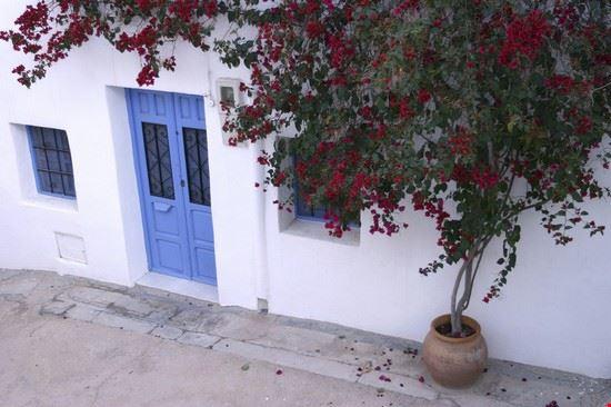 eingang mit bougainvillea bei almeria almeria