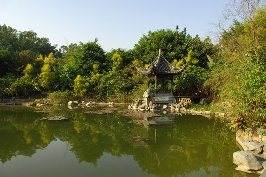 Photo Shanghai Century Park In Shanghai Pictures And