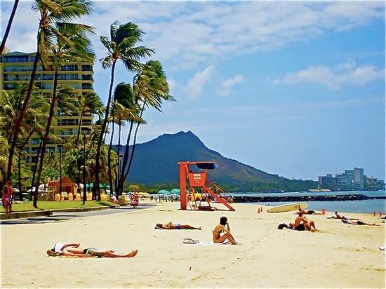 Turisticapagina HonoluluGuida Turisticapagina HonoluluGuida HonoluluGuida 2 2 2 2 Turisticapagina HonoluluGuida Turisticapagina HonoluluGuida HonoluluGuida 2 Turisticapagina c31JFlKu5T