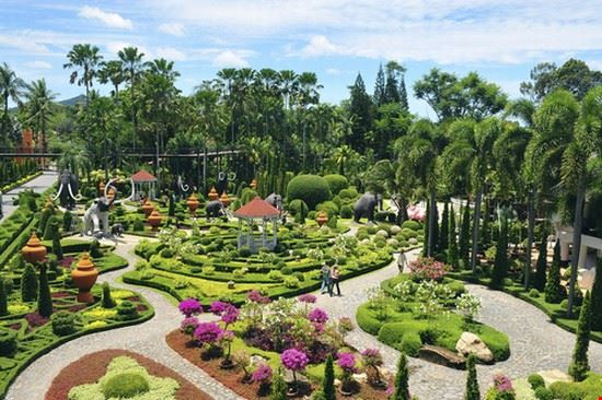 Tropical Garden in pattaya