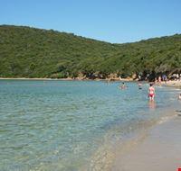 spiaggia di Cala Violina
