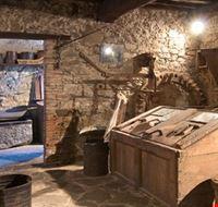 27572 lucca interno del museo del castagno