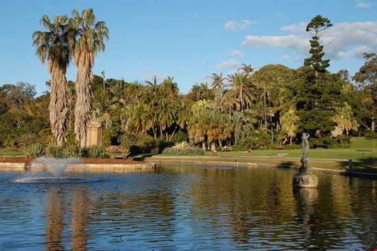 27724 sydney royal botanic gardens