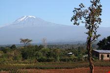 arusha mount kilimanjaro