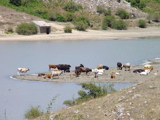 lago tre aree