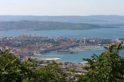 Veduta della città di Muggia e della costa