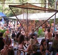 goa bamboo forest disco