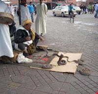 31939 marrakech djemaa el fna