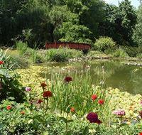 nel giardino botanico di zagabria