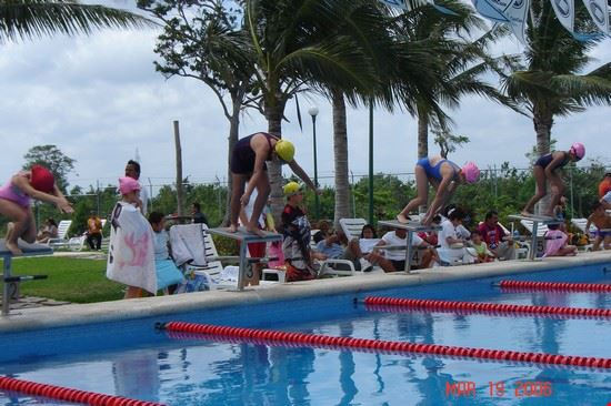 33285 cancun club albatros