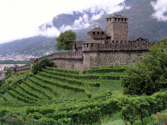 Il castello di Casalgrande,quello che svetta sulla citta'