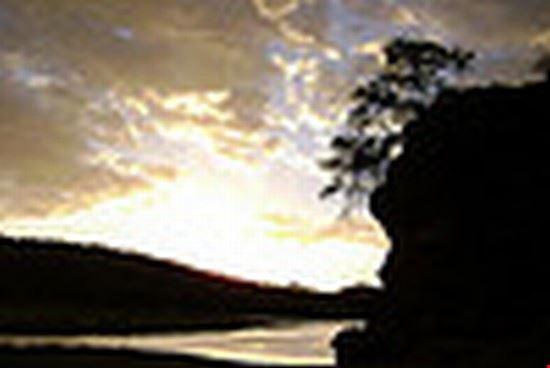 avis dam view