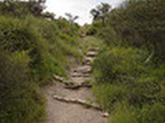 33478 windhoek avis dam walking trail