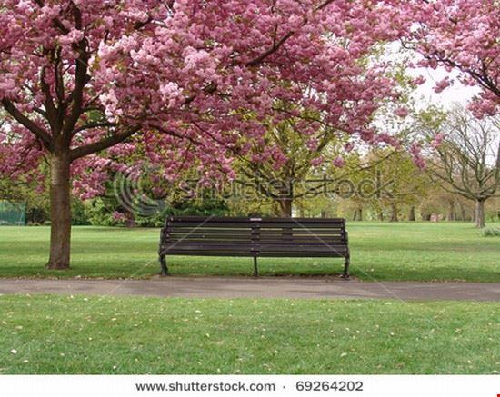 33889 london park