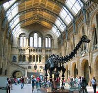 34458 london the natural history museum