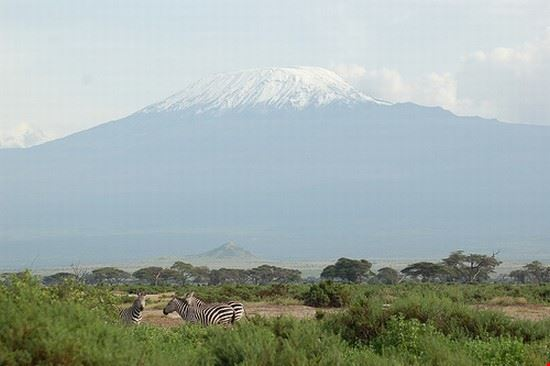 35858 nairobi amboseli national park