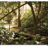 36184 malaga jardin botanique la concepcion a malaga