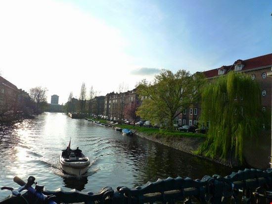 36246 amsterdam rivierenbuurt