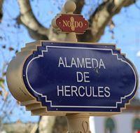 36472 sevilla alameda de hercules