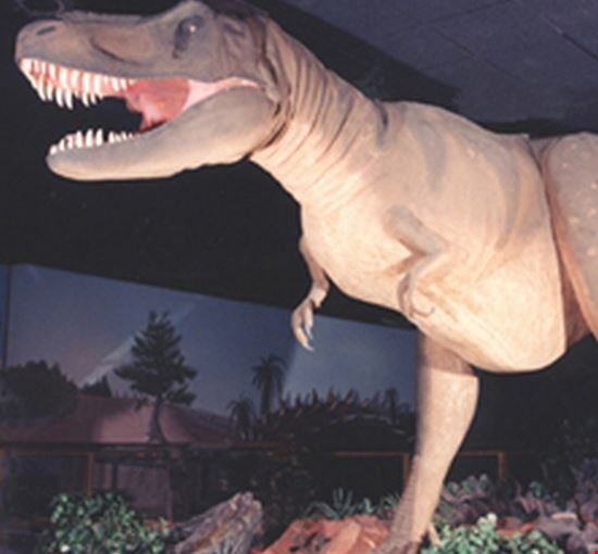 36617 las vegas las vegas natural history museum