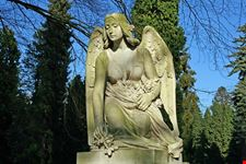 begraafplaats tongerseweg maastricht