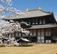 Nara au Japon