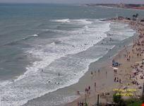 alicante alicante playa
