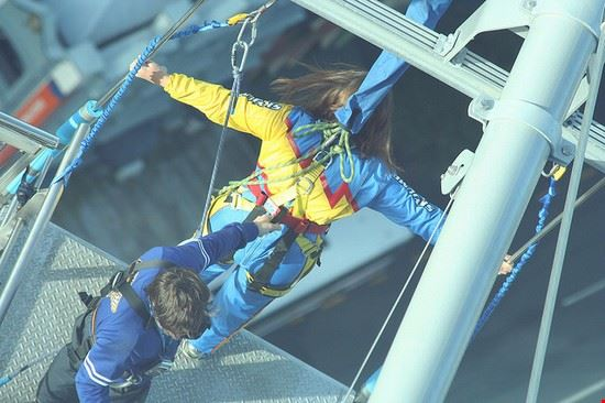 36818 auckland skydiving