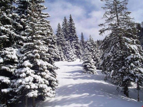 Ultima neve di Marzo